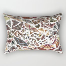 Moths of North America Pattern Rectangular Pillow