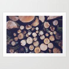 firewood no. 1 Art Print