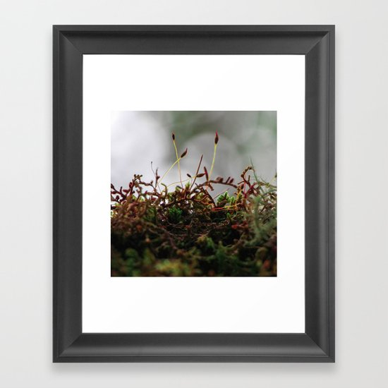 Miniscule World Framed Art Print