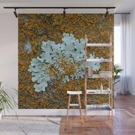 Orange and green moss in tree bark Wall Mural
