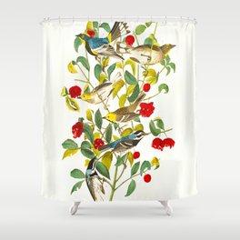 Vintage Scientific Bird & Botanical Illustration Shower Curtain