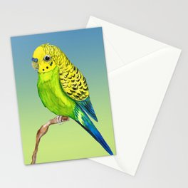Cute budgie Stationery Cards