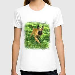 Junior Maligator T-shirt