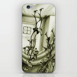 The Mirror iPhone Skin