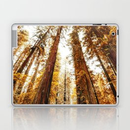 red woods forest in california Laptop & iPad Skin
