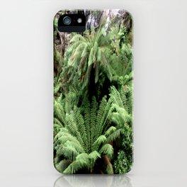 Ferns & Waterfall iPhone Case