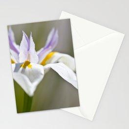 White Iris, close up - Botanical Photography Stationery Cards