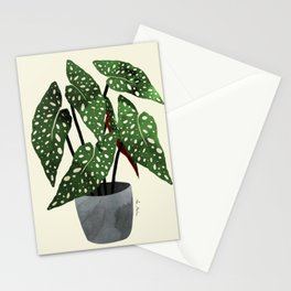 begonia maculata interior plant Stationery Cards