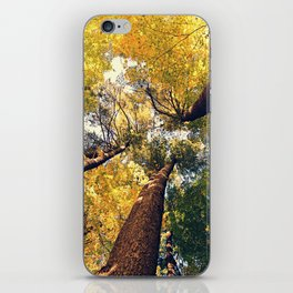 The tall one iPhone Skin