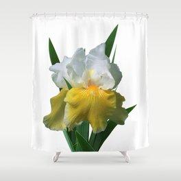 Iris 'Play to Win' Shower Curtain