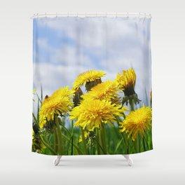 Dandelion meadow Shower Curtain