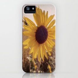 Imperfections iPhone Case