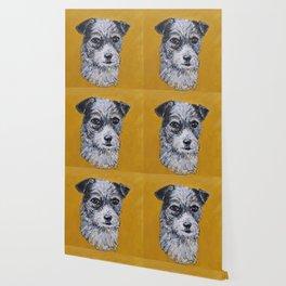 Terrier Mix Dog Portrait Wallpaper