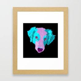 australian shepherd - blk Framed Art Print