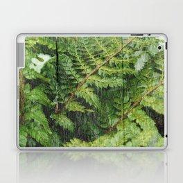 Fern Fronds Laptop & iPad Skin