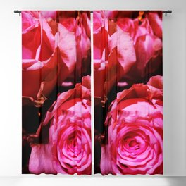 Shabby Chic Brilliant Bright Red Roses Blackout Curtain