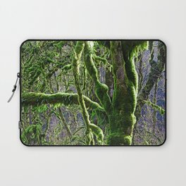 RAIN FOREST MAPLES IN SPRING Laptop Sleeve