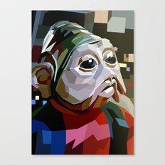 SW#10 Canvas Print