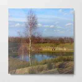 Birch by the Lake Metal Print