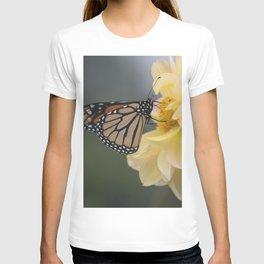 Longwood Gardens Autumn Series 406 T-shirt