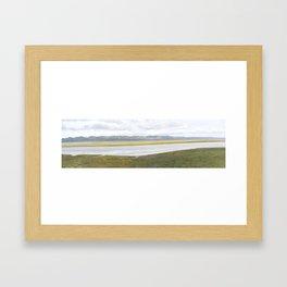 Carrizo Plain Mega Bloom, Central California Framed Art Print