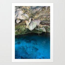 Dos Ojos Cave Cenote Mexico Mayan Jungle Nature Reserva Reserve Travel Latin America Art Print