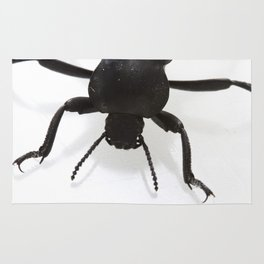 The Ground Beetle Rug