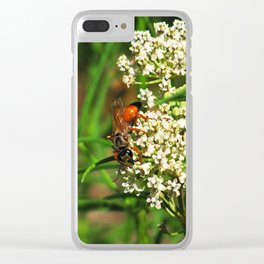 Wasp 1795 Clear iPhone Case