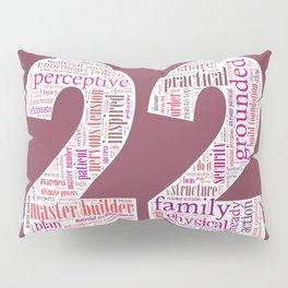 Life Path 22 (color background) Pillow Sham