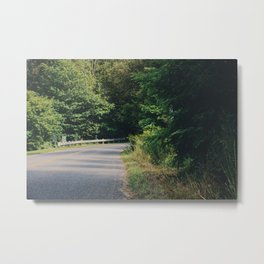 Summer road Metal Print