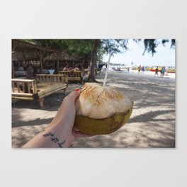 Fresh Coconut Canvas Print