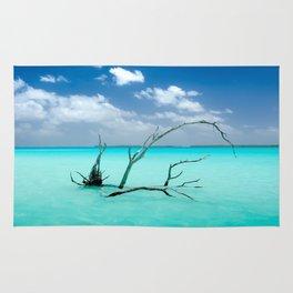 Driftwood in Lagoon Rug