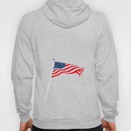 The American Flag (Color) Hoody
