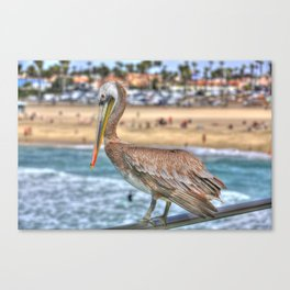 Hanging on the pier rail in Surf City. Canvas Print
