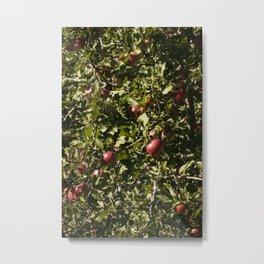 Red Apple Tree Metal Print