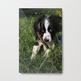 Puppy Chewing On A Stick Metal Print