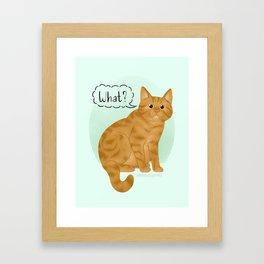 What's New Kitty Cat Framed Art Print