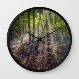 Picture Rays of light USA Leelanau Michigan Nature forest Trees Forests Wall Clock