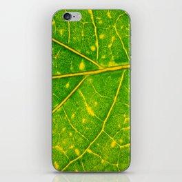 Macro Leaf 3 iPhone Skin