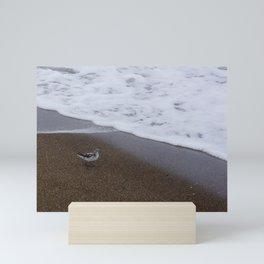 Sand Piper Mini Art Print