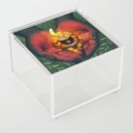Alebrije Acrylic Box
