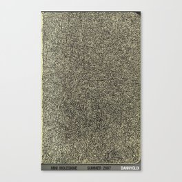 noname Canvas Print
