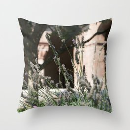 Lavender of Cloisters Throw Pillow