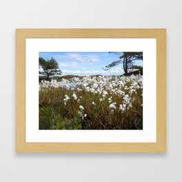 Swedish swamp flowers Framed Art Print