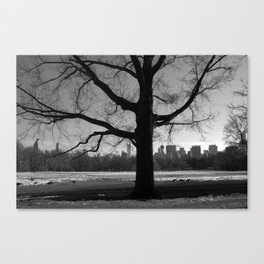 Growing Strong Canvas Print