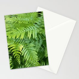 Lush green fern leaves, tropical forest illustration in vivid colors Stationery Cards