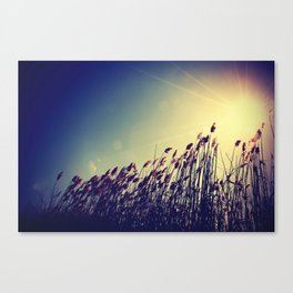 and there was light. Canvas Print