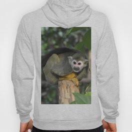 Cute Monkey Hoody