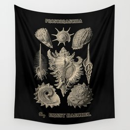 """Prosobranchia"" from ""Art Forms of Nature"" by Ernst Haeckel Wall Tapestry"
