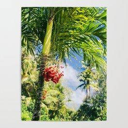 Keanae Palm Beauty Poster